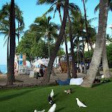 Hawaii Day 2 - 114_0880.JPG