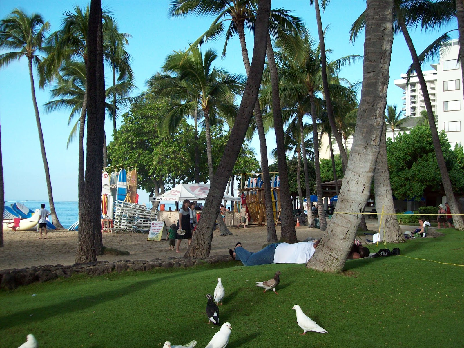 Hawaii Day 2 - 114_0880.JPG