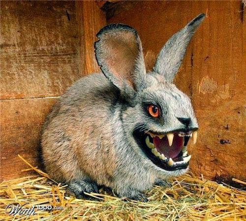 Frightful Fridays Vampire Bunny
