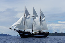 new sails!
