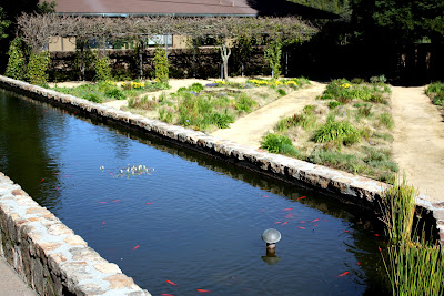 Garden at Hess Collection Winery in Napa