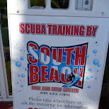 south beach dive & suft center in Key Largo, Florida, United States