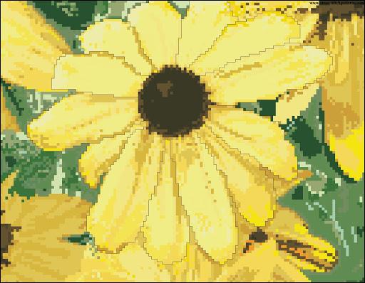 Sunflower 5845 chart