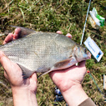 20140624_Fishing_BasivKut_026.jpg