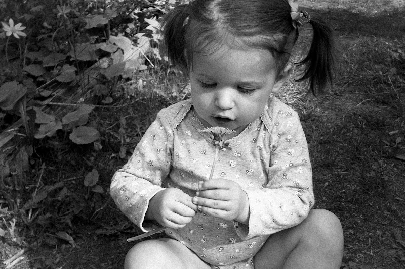 Annalise with a dandelion