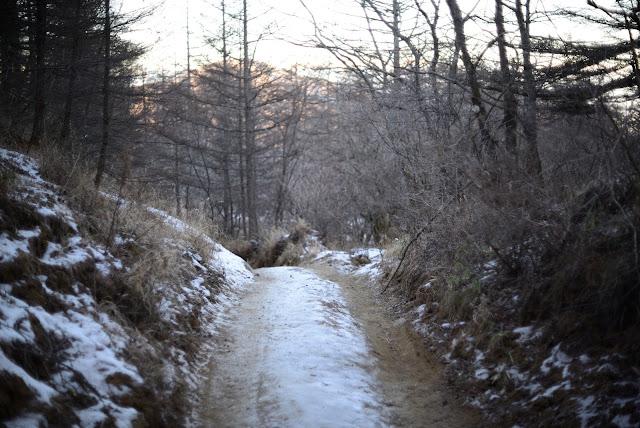 三つ峠 登山道 凍結