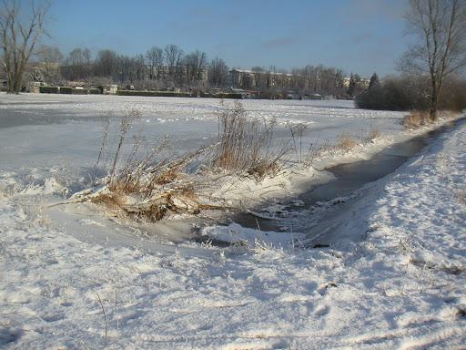 Auch hier nochmal der zugefrorene Fluss, der vor dem Zufrieren keinen ungehinderten Abfluss mehr hatte und dadurch großflächig übergelaufen ist! Aus diesem Grunde, viel Eis auf den Wiesen!