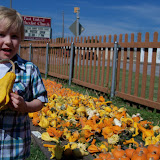 Pumpkin Patch 2015 - 100_0433.JPG