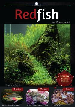 redfish 3