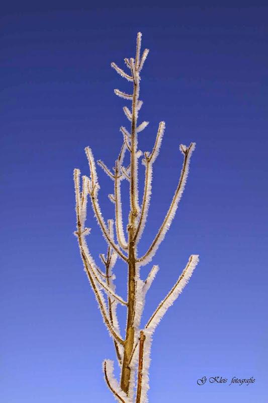 Winter - Winter-046.jpg