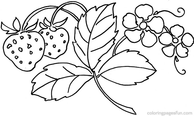 Flower Coloring Pages Free With Flower Coloring Pages Free Printable