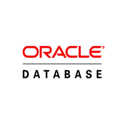 What is Oracle Database Server