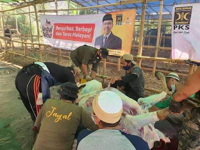 Mahfudz Abdurrahman Serahkan 14 ekor sapi dan 43 Ekor kambing Hewan Qurban