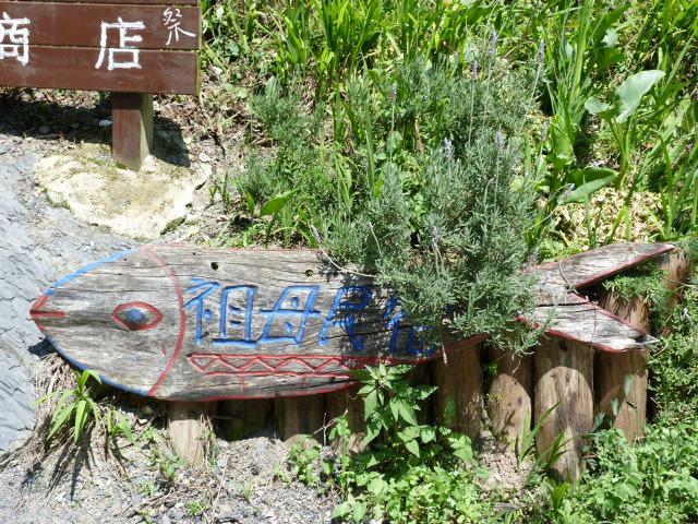 TAIWAN. Dans une region ou habitent les aborigenes de l ethnie Atayal - P1110827.JPG