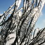 tn_lachaux-2010-12-52.jpg
