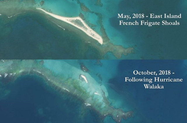 Aerial view of East Island French Frigate Shoals, in May 2018 (above) and in October 2018, after Hurricane Walaka (below). Photo: U.S. Fish and Wildlife