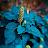 Sarah Fey avatar image