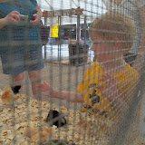 Fort Bend County Fair 2015 - 100_0315.JPG