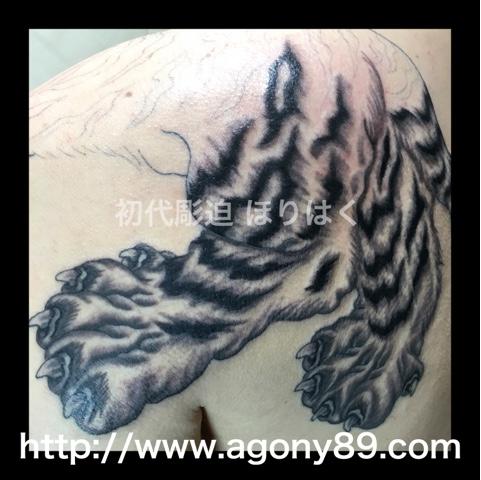 刺青、タトゥー、刺青デザイン、タトゥーデザイン、tattoo、tattoo画像、刺青画像、タトゥー画像、刺青デザイン画像、タトゥーデザイン画像、虎、虎 刺青、白虎、和彫り、筋彫り、烏彫り、暈し、千葉 刺青、千葉 タトゥー、千葉県 刺青、千葉県 タトゥー、柏 刺青、柏 タトゥー、松戸 刺青、松戸 タトゥー、五香 刺青、五香 タトゥー、タトゥースタジオ 千葉、タトゥースタジオ 千葉県、tattoo studio、タトゥースタジオ、 アゴニー アンド エクスタシー、初代彫迫、ほりはく、彫迫ブログ、ほりはく日記、刺青 彫迫、彫師、刺青師、http://horihaku.blogspot.com
