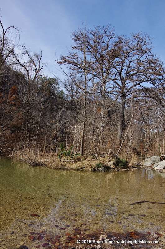 01-25-14 Texas Hill Country after an Ice Storm - IMGP1163.JPG