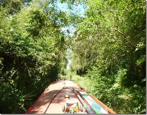 3 fenny compton tunnel jungle