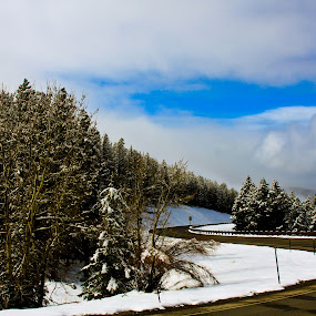 Road with snow and mountains by Jorge Villalba - Landscapes Mountains & Hills ( snow trees, winter, blue sky, snow, road )