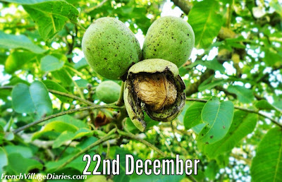French village diaries Walnuts advent calendar a to z french food