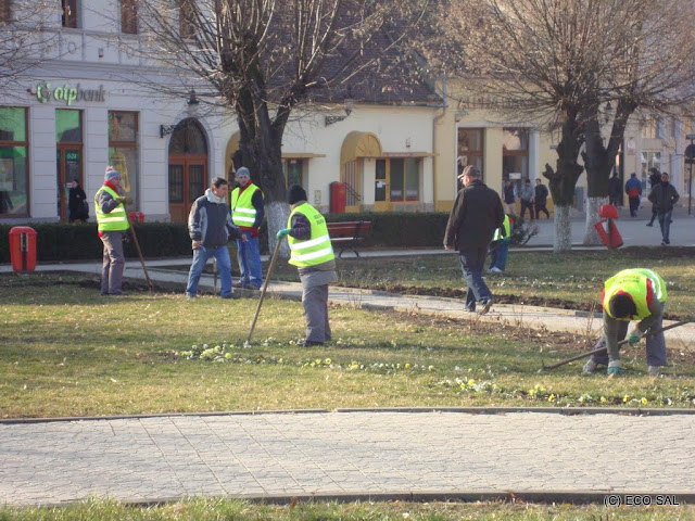 Curăţenia de Primăvară 2010 - DSC04628.JPG