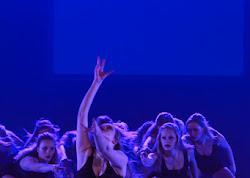Han Balk Voorster Dansdag 2016-3756.jpg