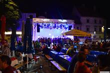 Stadtfest Herzogenburg 2013_ (30)