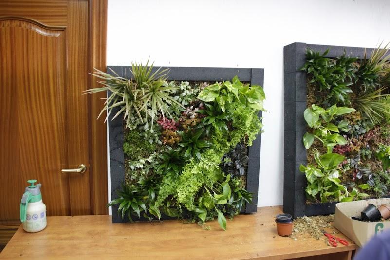 Curso de jardines verticales