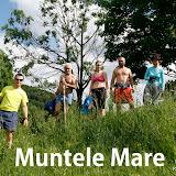 2011-06-14 Muntele Mare-Apuseni