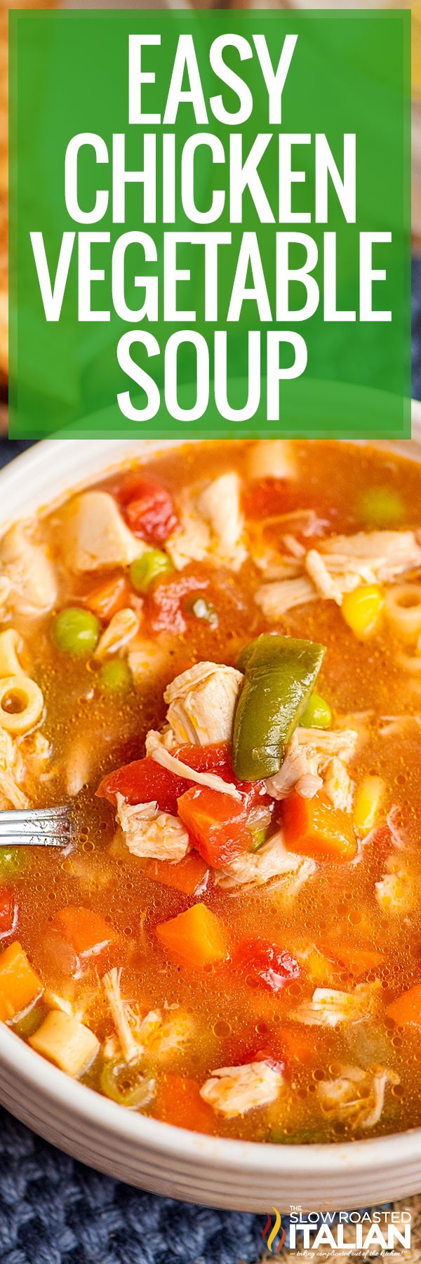 Title text (pictured in a white bowl): Easy Chicken Vegetable Soup