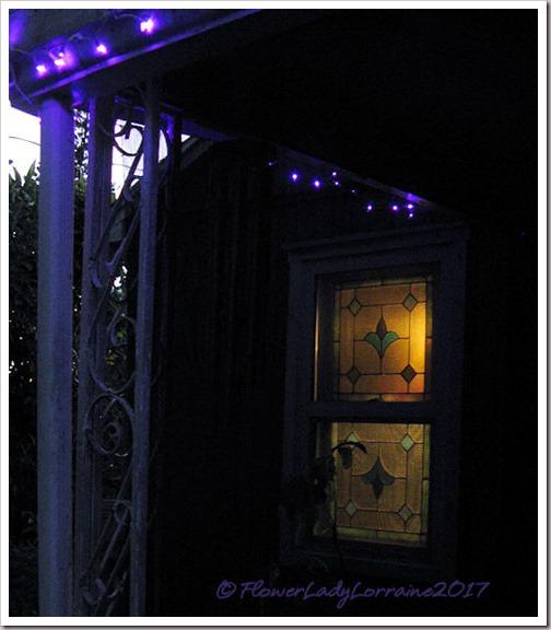 12-20-lights