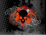Orance Skull