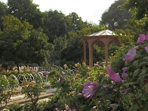 Photo: Berlin, Orientalischer Garten
