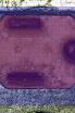 redblue.PNG