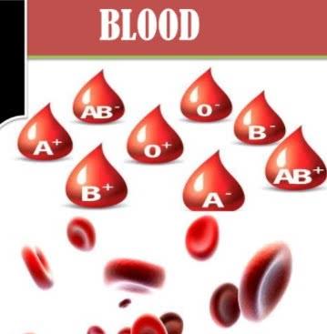 فسلجة الدم pdf