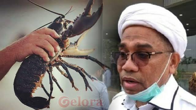 Hakim Tipikor Singgung Ngabalin di Sidang Suap Ekspor Benih Lobster