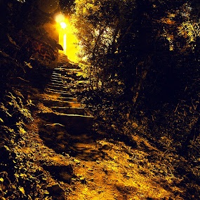 the dark passage by Paschalis Angelopoulos - City,  Street & Park  City Parks ( yfanet, stream, stairway, park, spooky, triandria, dark, trees, night, light, alley )