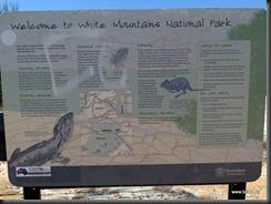180507 019 White Mountains