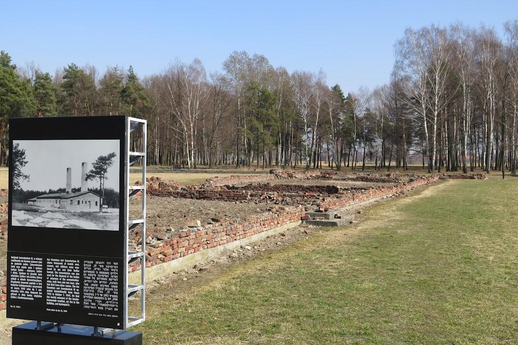 Im Wald liegen Krematorium und Gaskammer IV