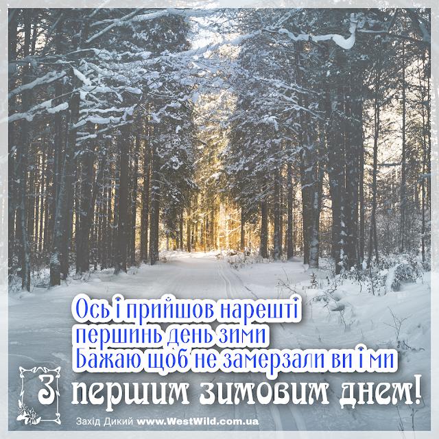 З першим днем зими