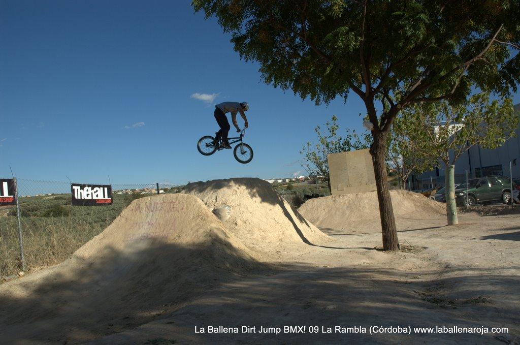 Ballena Dirt Jump BMX 2009 - BMX_09_0086.jpg