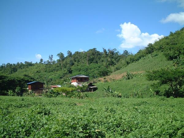 Loins de tout , perchés dans les montagnes, des gens vivent dans des conditions difficiles. Aurait-il choisi la liberté…