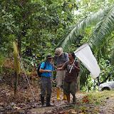 """Felicity Oram (Primatologue, Seattle) et Hamisah Elahan """"Mislin"""" (Head of Hutan's Orang-Utan Research Unit). Entre la plantation de palmiers à huile et la forêt (lot n°2). Sukau (Sabah, Malaisie), 12 août 2011. Photo : J.-M. Gayman"""