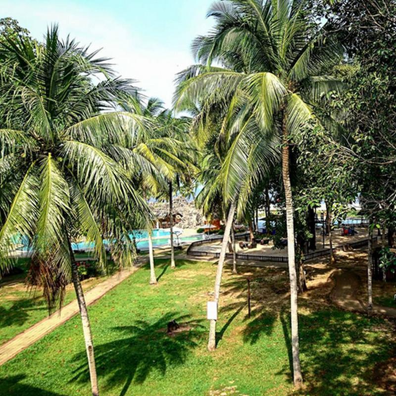 The Legend Resort Cherating destinasi percutian keluarga !