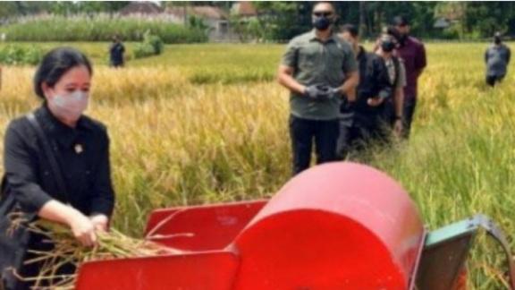 Puan Maharani Dukung Digitalisasi Pertanian Indonesia