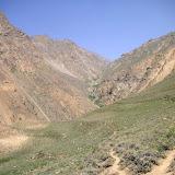 Vallée de Sost, au Sud de Khorog, 2900 m, station de Karanasa alpherakyi AVINOV, 1910, Zygaena (M) pamira SHELJUZHKO, 1919. 5 juillet 2008. Photo Jean-Marie Desse
