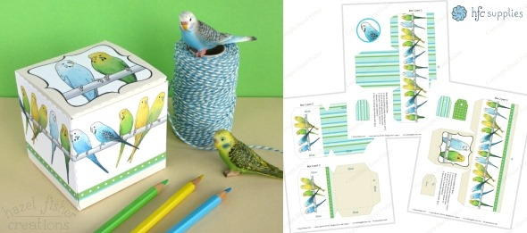 2015 June 01 may monthly review budgie printable box hazelfishercreations